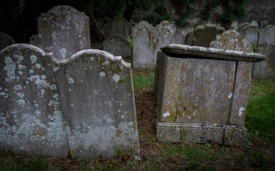 Why Your Sales Opportunity Might Not Actually Be Dead